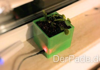 Smart Plant Pot – Der erste schlaue Blumentopf in Realität