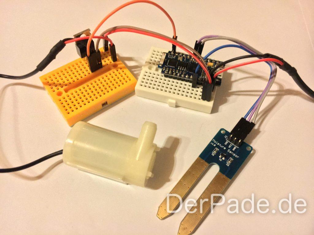 Cactus Rev 2 Verkabelung mit einem Soil Moisture Sensor und einer Mini Wasserpumpe.